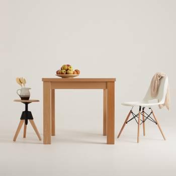 Lot de 2 chaises design en bois et plastique